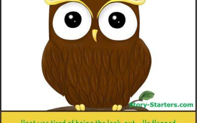 Hoot the Owl Story Starter