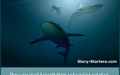 Circling Sharks Writing Prompt